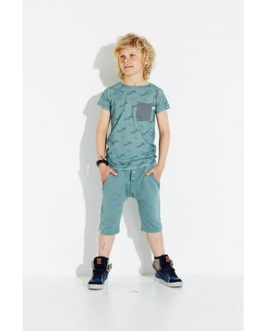 T-shirt Bambino gabbiani AlbaBaby