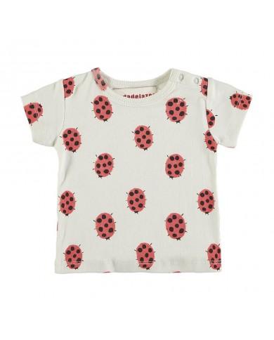 T-shirt Bambina coccinelle...